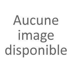 Egon Schiele 1890-1918 : L'âme Nocturne de L'artiste - Reinhard Steiner